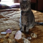 cleo with rocks gems