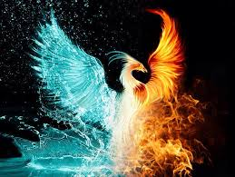 phoenix rising new moon november
